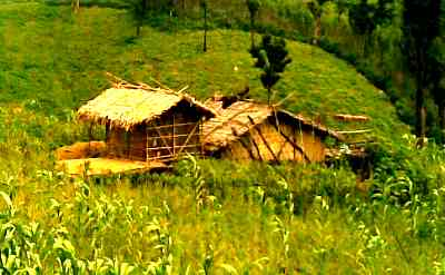 A traditional Chakma House made of bamboo.